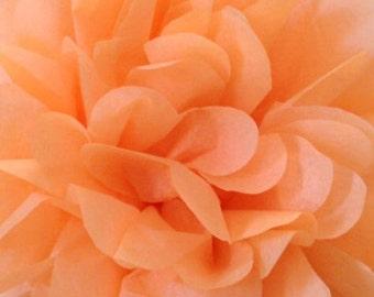Peach pom pom,party poms,birthday pompoms,Firstbirthday,baby shower,hanging poms,nursery pom pom,pompoms,party decorations