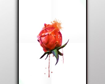 Dripping Rose - 12x18 High Quality Matte Print/Poster
