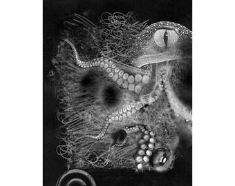 Sea Life #12, Inkjet print  7x9 image on 11x14 archival paper