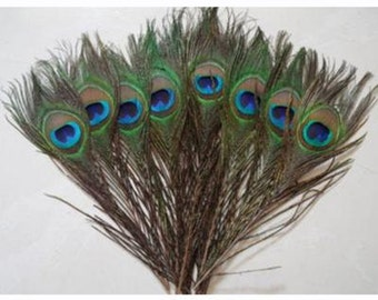 Peacock feather / general protection / good luck / love /