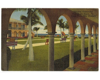 Vintage Palm Beach Shores Florida linen postcard | Colonnades Hotel | 1950s FL travel postcard | tropical beach decor, coastal art