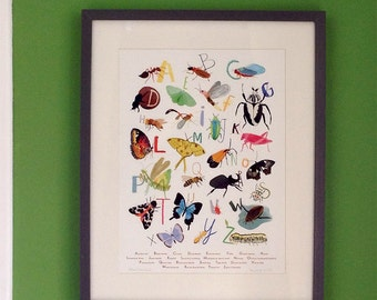 Insectabet – A3 Giclée Art Print – Insects mini beasts butterflies bugs A to Z