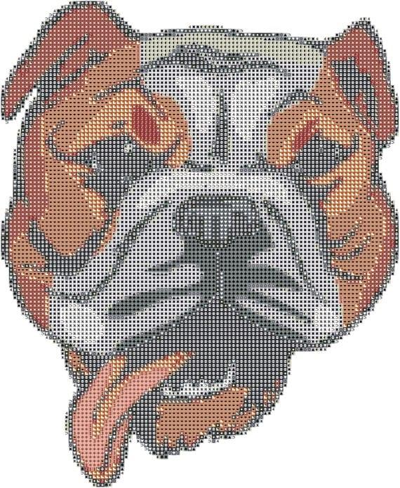 bull dog breed cross stitch pattern graph pattern and