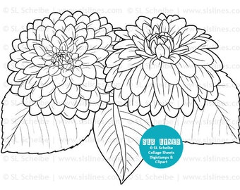 digistamp flowers dahlias coloring page flower adult colouring dahlia digital stamp