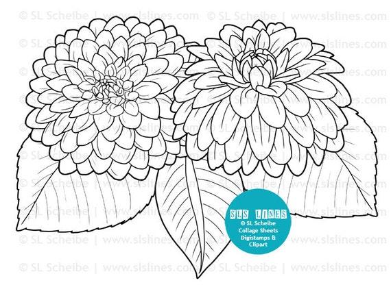 Digistamp flowers dahlias coloring