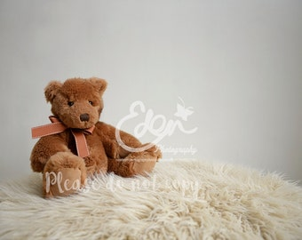 Newborn Digital Backdrop Brown Teddy Bear And Fluffy Rug Prop Scene Newborn  Baby And Toddler Photography