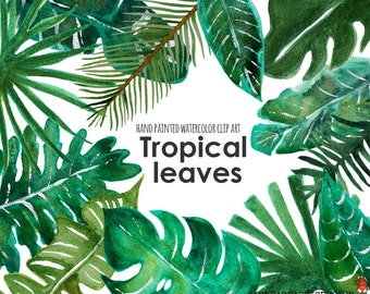 "Tropical clip art: ""TROPICAL LEAF clip art""  hand painted watercolor clip art, digital flowers, palm leaves 12 PNG  files (5238)"