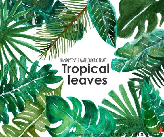 Tropical Clip Art Quot Tropical Leaf Clip Art Quot Hand Painted