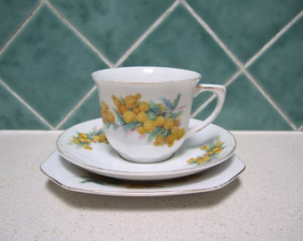 Pretty Cup Saucer and Plate - Wattle Pattern
