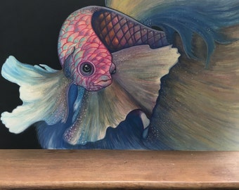Siamese Fighting Fish - watercolour pencils and acylic