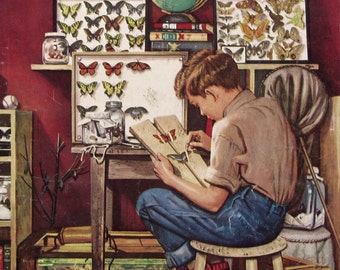 1951 Boy With Butterfly Collection - Lepidopterist, Bug Collector - 1950s Saturday Evening Post Magazine Cover - Stevan Dohanos Art