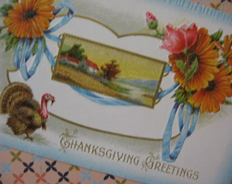 Antique Thanksgiving Postcard Embossed, Turkey with Orange Flowers, A S Meeker, NY, Used - 1910