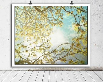 Tree photography, tree photo, nature decor, tree art, green, trees, spring decor, nature, home decor, blue, yellow, nature photography