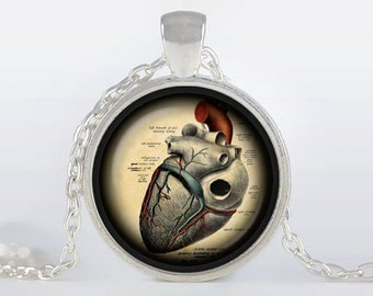 Anatomical heart  pendant Anatomical heart hecklace steampunk Anatomical heart jewelry