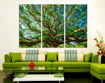 3 Panel Canvas Split ,Tree branches with leaves in sunlight, Photo Print on Canvas, canvas art, Interior design, Room Decoration, Photo gift