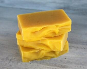 Unscented Pumpkin Triple Butter Soap with Pumpkin Puree, Pumpkin Seed Oil, Organic Shea Butter, Mango, Cocoa Butters - Natural Palm Free