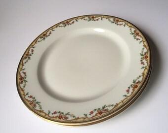 French Limoges Dessert Plates / Set Of 2 Plates  / Meuse Plates / Limoges Plates / Limoges Meuse / Meuse Pattern /  Limoges Dessert Plate