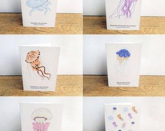 Jellyfish card set