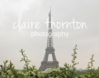 Photograph | Paris | Eiffel Tower 3301