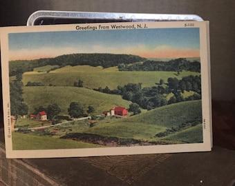 Vintage New Jersey Postcard - set of 5