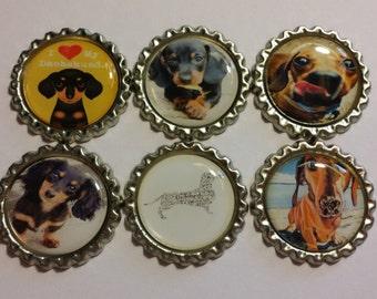 Set of 6 Dachshund Themed Finished Bottle Caps - Magnet Set - Necklace Set