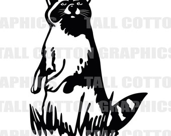 RACCOON  Vinyl Decal Sticker decor #WL001