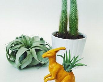 Small Mustard Yellow Parasaurolophus/Parasaur Dinosaur Planter Air Plant; Dinosaur Planter; Air Plant; Desk Accessory; Home Decor; Gift Idea