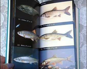 Field Guide to North American Fishes, Whales and Dolphins (and other swimmy things) by the Audubon Society