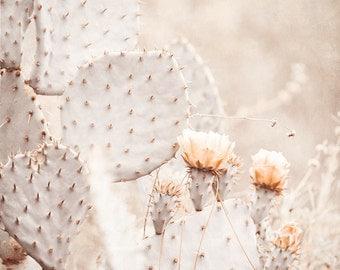 Cactus Photography, Brown Wall Art, Nature Photography, Taupe Wall Decor, Peach Art, Desert Art Print, Southwestern Decor, Cactus Garden