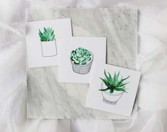 Succulent Prints (3)