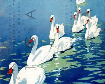 Coles Phillips STUNNING Illustration SWAN LAKE. Digital Swan Download Digital Vintage Swans Printable.