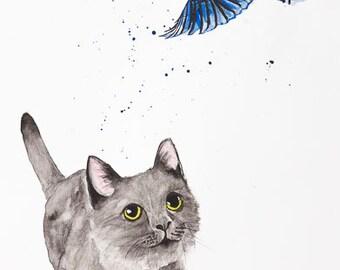 Grey Kitten and Blue Mockingjay
