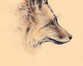 Fox Portrait - A4 Art Print - woodland creatures illustration giclée animal vixen portrait red fur decor wall art