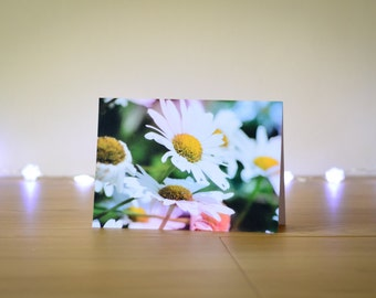 Photo Note Card, Daisies, Nature Photography, Floral, Photographic Print, Blank Greetings Card