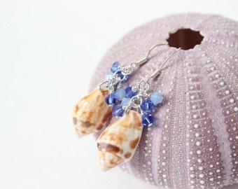 Seashell Earrings - Triton Shell Earrings - Crystal Cluster Earrings - Shell Earrings - Hawaiian Shell Earrings - Beach Wedding Jewelry