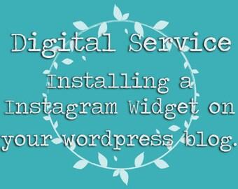 Digital Service: Installing an Instagram Widget | Wordpress Blog