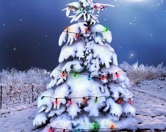 Christmas Night Photography Backdrop (HDY-SE-001)