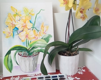 Yellow orchids in a pot, watercolors