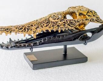 Crocodile cast skull
