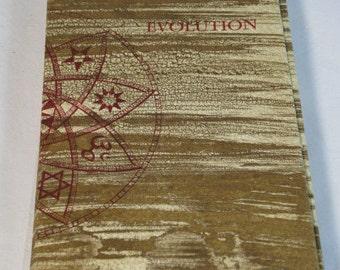 EVOLUTION numbered artist