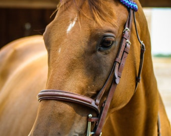 Cobra browbands