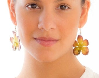 Purple Green Vanda Orchid Earrings