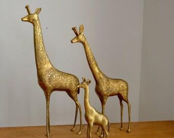 """Large vintage brass giraffe family, Set of 3, Tallest giraffe is over 17"""""""