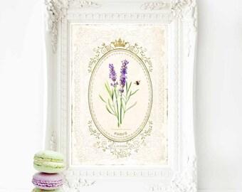 French Lavender print, lavender, wall decor, French lavender, home decor, botanical print, Paris, vintage home decor, French vintage decor