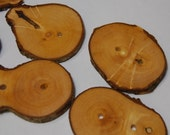 Handmade Wooden Tree Branch Buttons, Rustic Natural Wood Buttons, Black Locust Wood, Mixed Sizes, Set of 6
