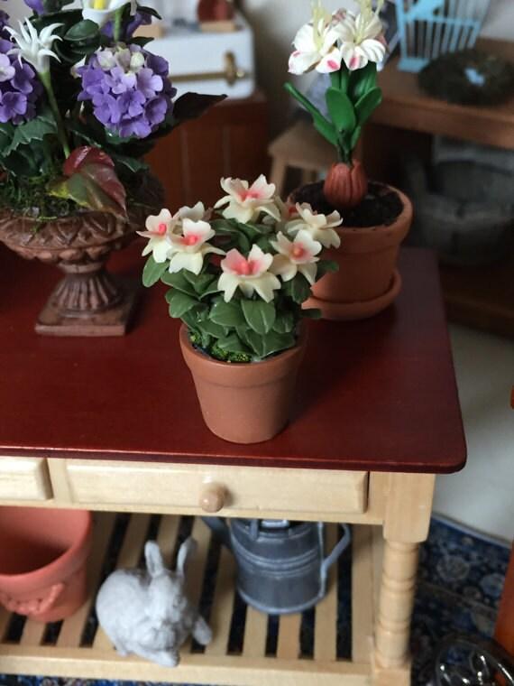 Miniature Azalea in Clay Flower Pot, Dollhouse Miniature, 1:12 Scale, Dollhouse Plant, Miniature Flowers, Dollhouse Accessory
