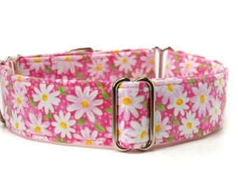 Floral Martingale Dog Collar,,, Maisie,, pink with white daisies Martingale Dog Collar in 1.5 inch or 2 inch width