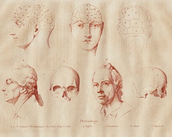 1838 Antique print of anatomy, phrenology,  detailed study of cranium, head, skull, mental abilities, original antique 179 years old