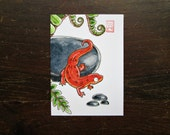 ACEO Newt - Fire in the Ferns - Archival Print - Watercolor Salamander Art