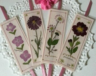 Flower designs, 4 unique bookmarks, pressed flowers, pink hydrangea, daisies and  primrose, laminated bookmarks, bible bookclub gifts